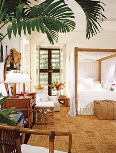 houseplant(bedroom)